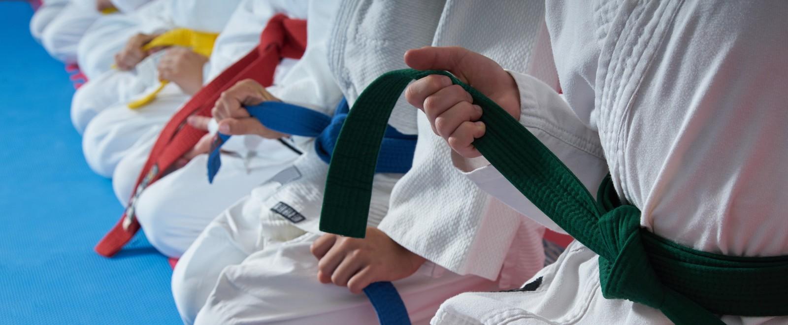 judo_f_96684378